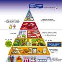 Nueva Pirámide Nutricional, se incluyen los suplementos nutricionales.