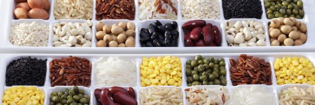 mejores fuentes de proteinas vegetales