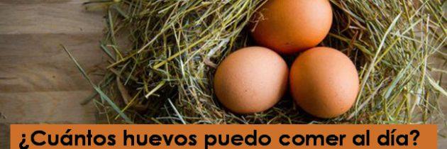 ¿Cuántos huevos puedo comer al día?