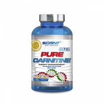 Pure Carnitine - 120 caps