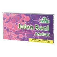 Jalea Real Adultos - 10x10 ml